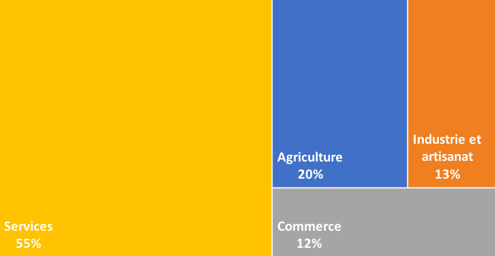Typologie entreprises